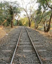Sanjay gandhi national Park Toy train track.
