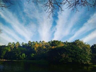 Sunrise hues @SGNP