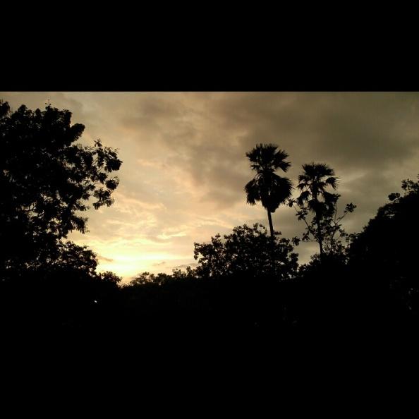 Evening Skies @NIT surat.