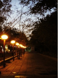 Those streets of IIM A old campus