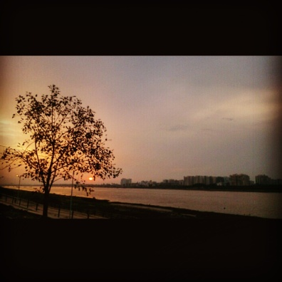 Calm and peaceful @Tapi Riverfront, Surat