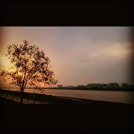 Calm and peaceful @Tapi Riverfront, Surat