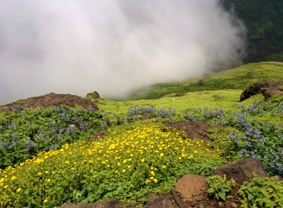 Into the laps of nature @Kalsubai trek